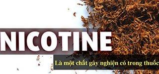 Cai thuốc lá với thảo dược