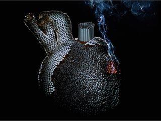 Thuốc lá ảnh hưởng đến tim mạch như thế nào?