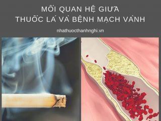Mối quan hệ giữa thuốc lá và bệnh mạch vành